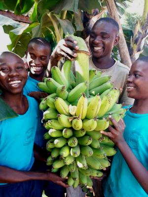 Kenyanska bananer