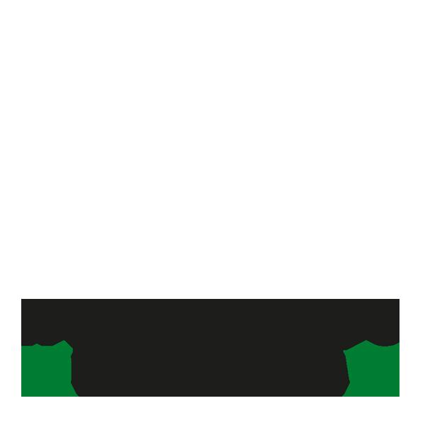 Konferensexperterna